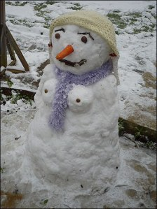 snow_woman_352_352x470