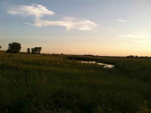 IMG_0086, springbrook prairie, snide reply blog